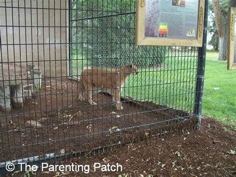 Garden City Zoo Animals Garden City Kansas Animal Garden Ftempo