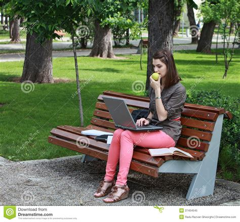 eating bench young woman studying in a park royalty free stock photo image 37404545