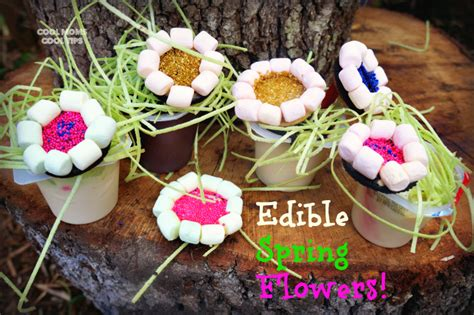 diy flower food celebrate spring with fun edible flower pudding cups diy