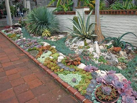 giardini e piante giardini con piante grasse piante grasse creare