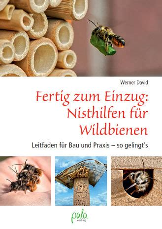 Teppichrasen F R Balkon 528 by 7 Sind Nisthilfen Fuer Solitaere Wildbienen Und Wespen