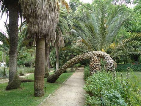 giardino botanico cagliari orto botanico cagliari recensioni su orto botanico
