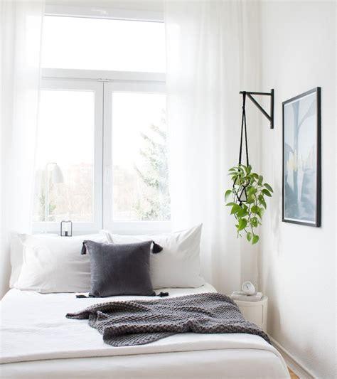schlafzimmer pflanzen pflanzen im schlafzimmer