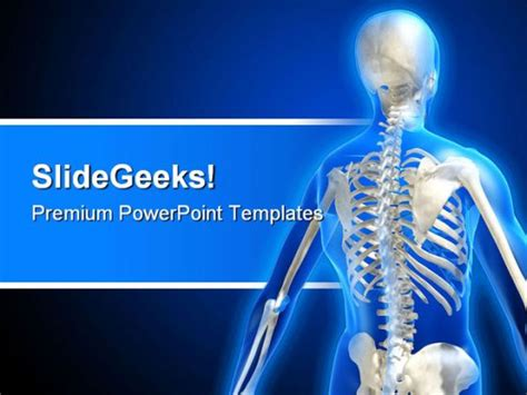 powerpoint templates free bones skeleton medical powerpoint template 0610