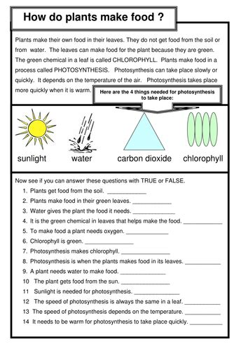 section 8 2 photosynthesis worksheet answers photosynthesis how do plants make food by coreenburt