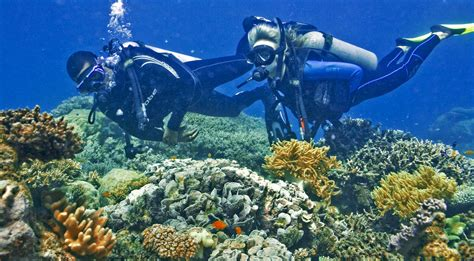 dive places top 10 best scuba diving places in the world story tourder s