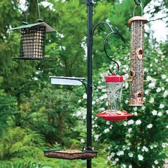 we have so many birds using our current multi feeder