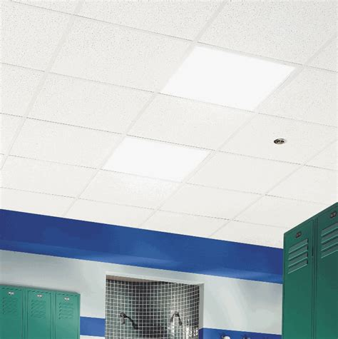 Armstrong Ceiling Dealers by Armstrong Fissured Ceramaguard Swimming Pools