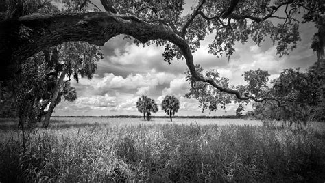 best black and white photo home clyde butcher black white photography
