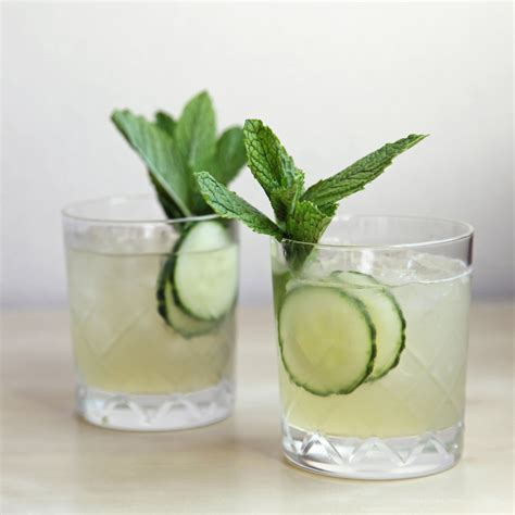 cucumber martini recipe cucumber gin fizz recipe dishmaps