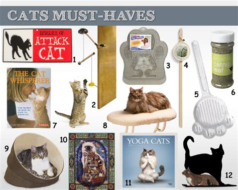 Must Haves For 2007 Your Shopping List by Don T Miss The Cat Must Haves Shopping List