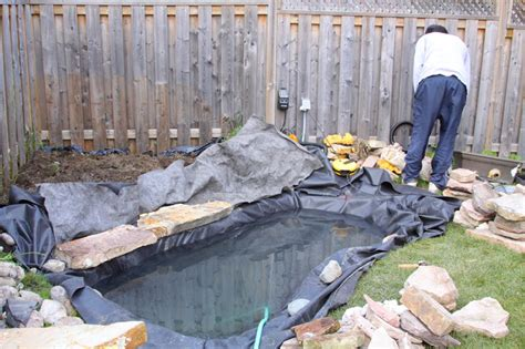 how to make a koi pond in your backyard toronto pond constructions fundamentals and techniques