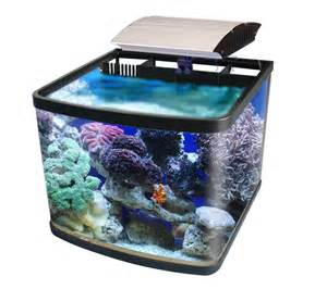 Small Desktop Saltwater Aquarium Small Saltwater Aquarium Nano Tanks