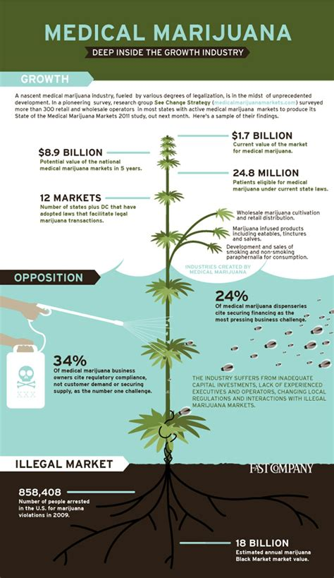 cannabis guide disease treatments using cannabis marijuana hemp extracts books infographic marijuana visual data hub