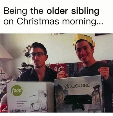 Sibling Memes - memes about brothers and sisters thechive