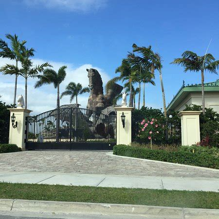cabinets to go hallandale beach fl gulfstream park hallandale beach all you need to know