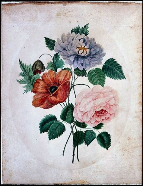 poppy and rose tattoo 25 best ideas about aster on