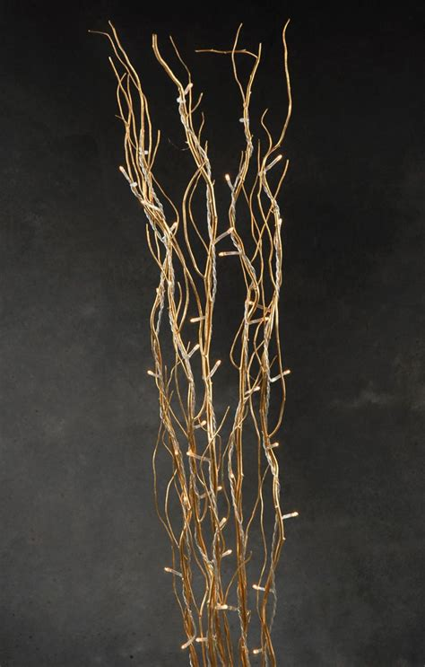 17 best ideas about willow branches on pinterest tall