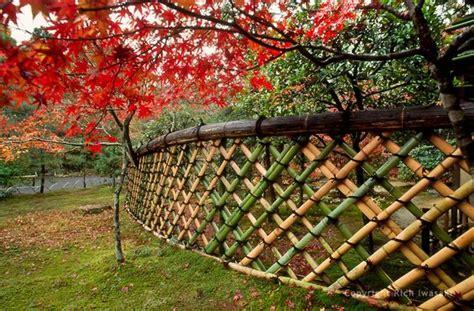 peek    beautiful bamboo fences