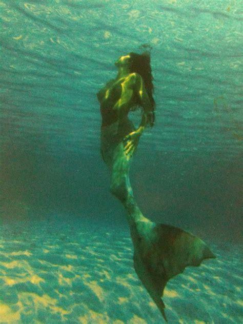 Real Mermaid Photos On Pinterest Real Mermaids Real | real live mermaid master mermaids pinterest