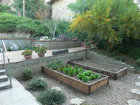 backyard raised garden terraced garden beds for raised vegetable garden bed plus