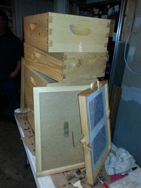 Hive Building ? King Bee's Secret Kingdom
