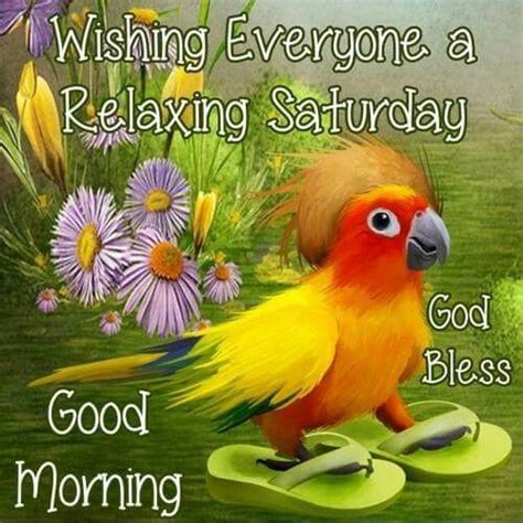 wishing   relaxing saturday good morning pictures   images  facebook