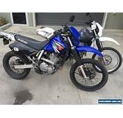 Suzuki DR650 For Sale In Australia