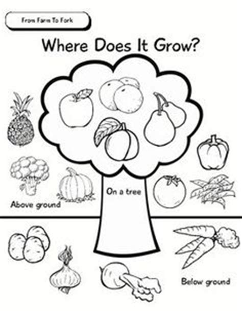 What Do You Call The Vegetable Pictured Below by Vegetable Coloring Pages Coloring Books Minis And Books