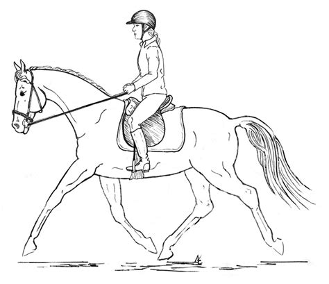 horse trainer coloring page posture in riders