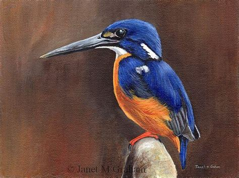 acrylic painting kingfisher azure kingfisher by janet m graham from bird gallery