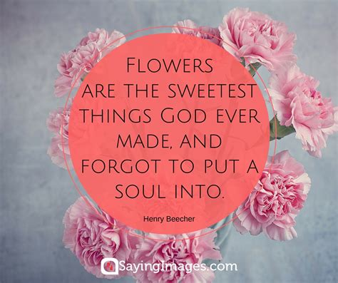 Things To Put You On A Floral Frenzy by 42 Beautiful Flower Quotes Sayingimages