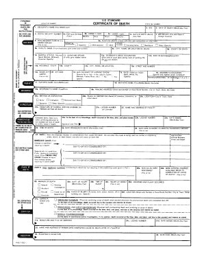 fake death certificate fill online printable fillable