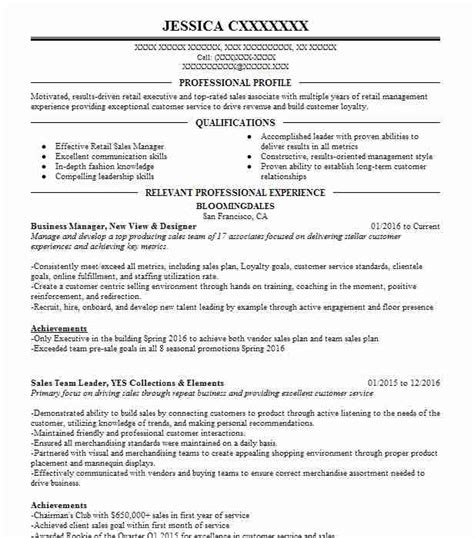Business Resume Templates by Business Resume Template Madinbelgrade