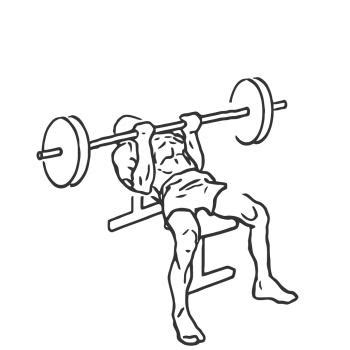 bench press for triceps reverse triceps bench press gymwolf