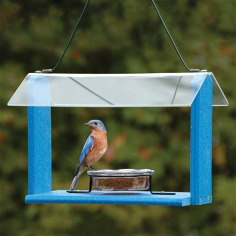 Green And Blue Bird Feeders woodlink
