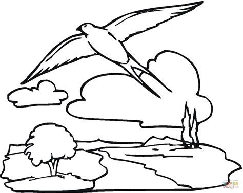 night sky coloring sheet coloring pages