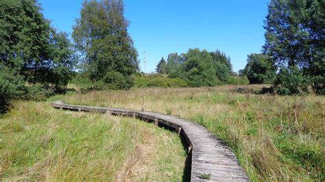 zwarte wandlen het naturpad cornelysmillen wandelingen en wandelroutes