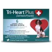 tri plus for dogs tri plus for dogs 26 50 lbs 12 pack green vetdepot