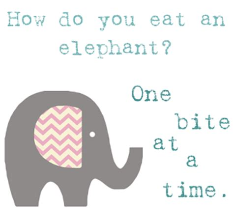 one bite at a time everyday meal plans for fighting cancer disease ibs obesity and other ailments books how do you eat an elephant ask matt bendoris