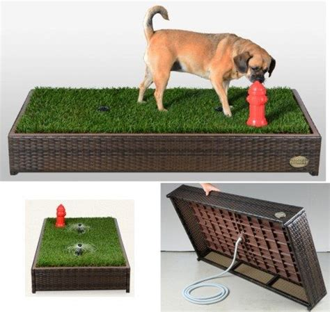 balcony dog bathroom a grass filled litter box for your dog the gadgeteer