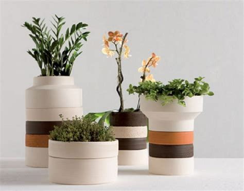 tips memilih pot bunga  tanaman