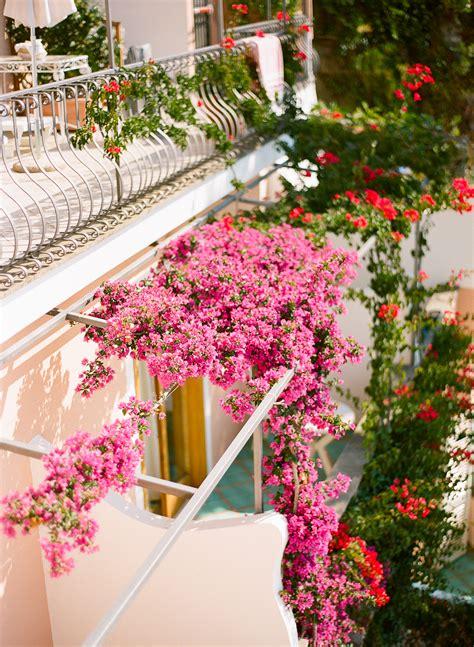 balcony flowers pink balcony flowers in positano italy entouriste