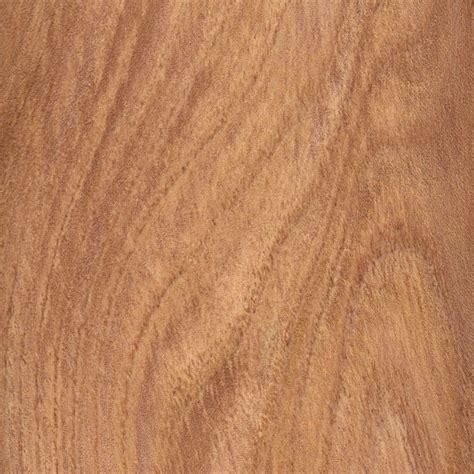 english elm the wood database lumber identification