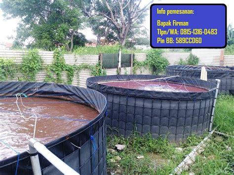 Jual Beli Kolam Terpal jual kolam terpal murah kolam terpal kotak kolam