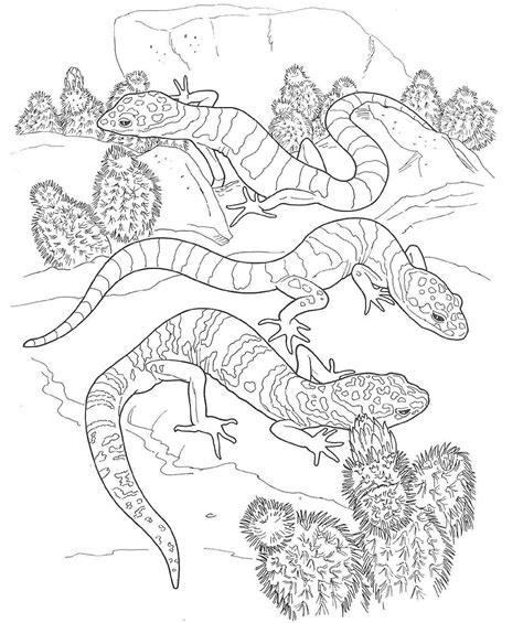desert coloring sheets coloring pages