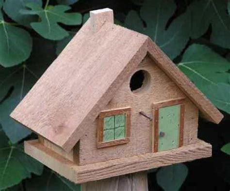 cool bird house plans cool bird house plans infobarrel images