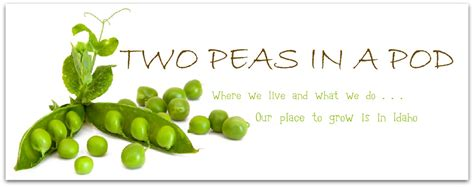 two peas in their pod two peas in a pod 187 2 peas in a pod