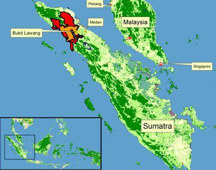 massive earthquake strikes  pariaman sumatra indonesia