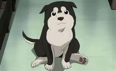 anime puppy top 20 anime dogs myanimelist net